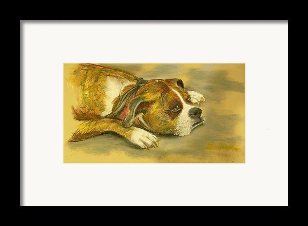 Sunday Arts Fair Dog In A Mood Framed Print By Deborah Willard