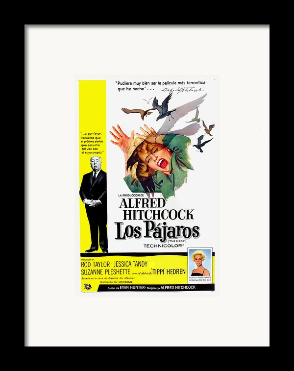 The Birds, Aka Los Pajaros, Alfred Framed Print By Everett