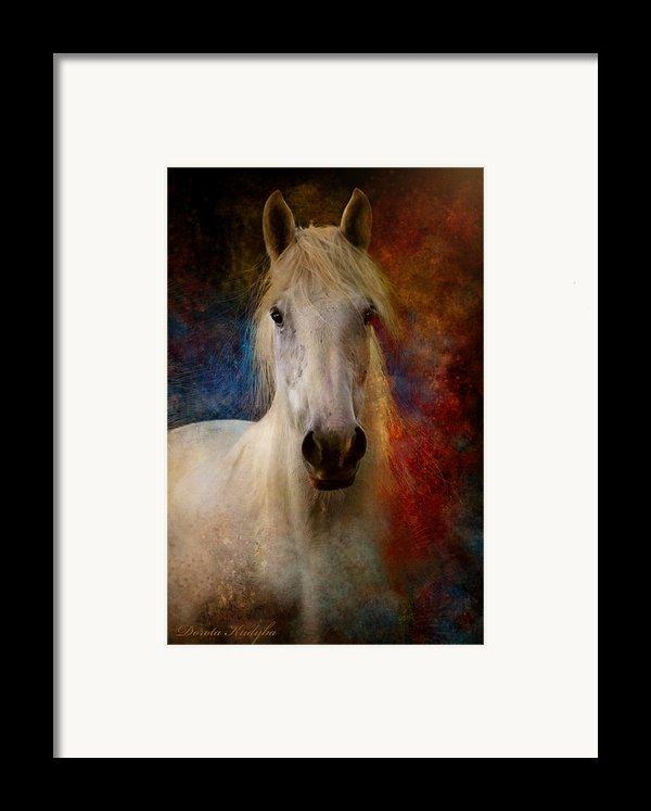 The Colours Of Love. Framed Print By Dorota Kudyba