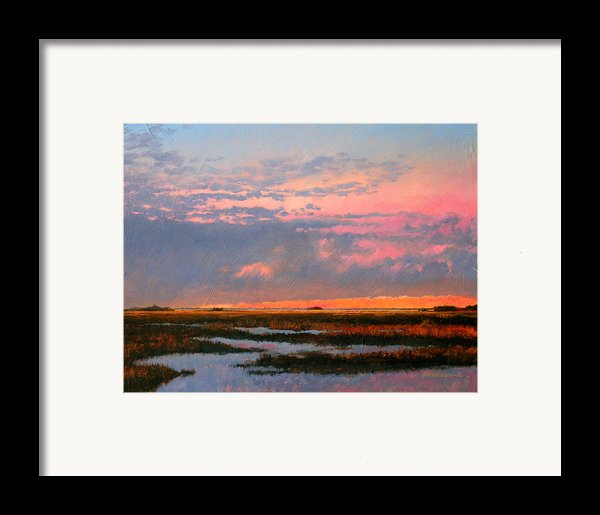 The Marsh  Framed Print By Gary Gowans