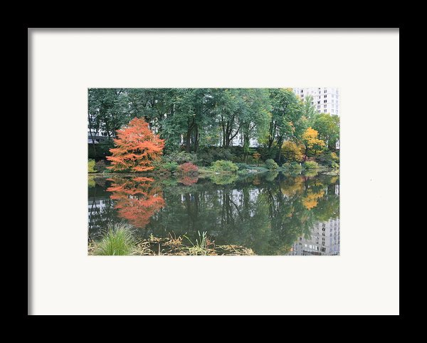 The Pond In Central Park In Fall Framed Print By Christopher Kirby