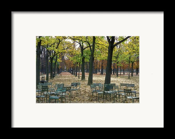 Trees And Empty Chairs In Autumn Framed Print By Stephen Sharnoff