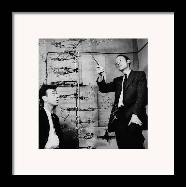 Watson And Crick Framed Print By A Barrington Brown And Photo Researchers