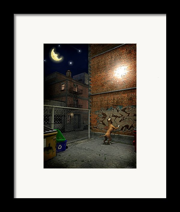 When Stars Fall In The City Framed Print By Cynthia Decker