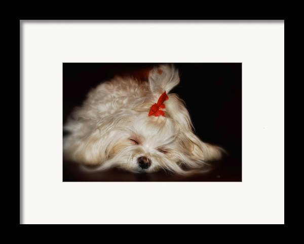 While Sugarplums Danced Framed Print By Lois Bryan