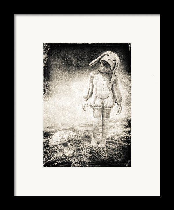 White Rabbit Framed Print By Bob Orsillo