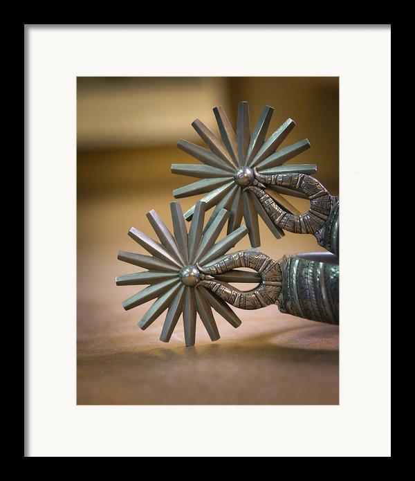 Wilson Capron Spurs Framed Print By Diane Bohna