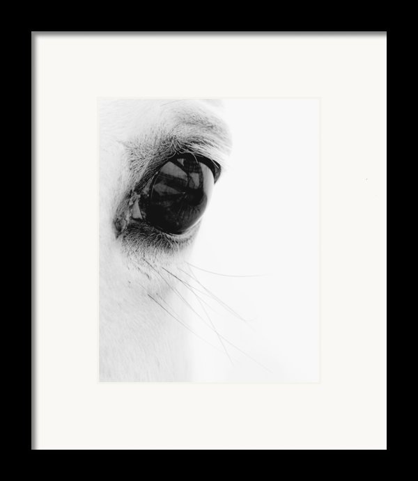Window To The Soul Framed Print By Ron  Mcginnis